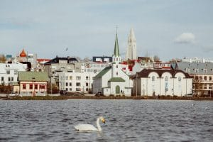 Tjornin in Reykjavik with a swan swimming in the lake